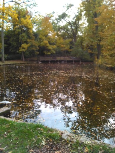 2015-10-24 automne 2015 bretigny etc 002